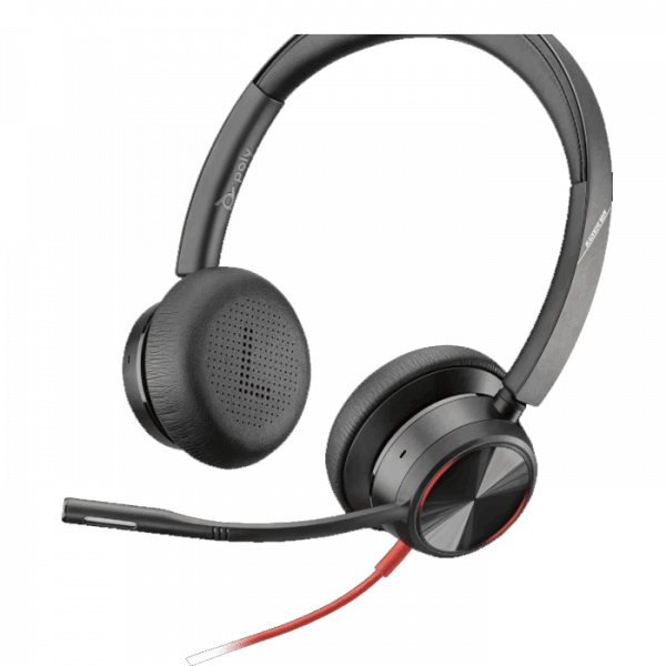 Poly BW8225 USB Headset